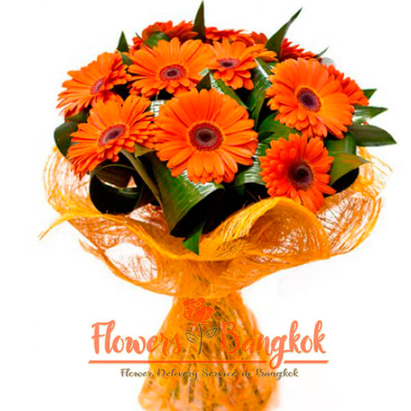Flowers-Bangkok - 11 Gerberas (orange)