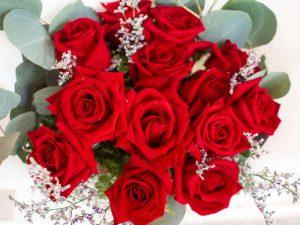 Premium Red Roses Delivery Bangkok