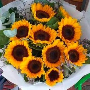 Sunflowers -flower delivery in Bangkok