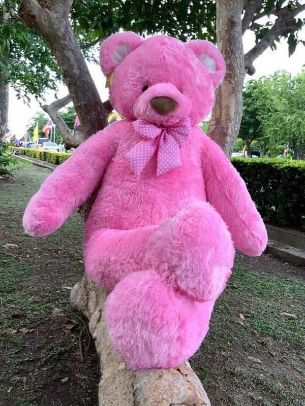 Pink Teddy Bear 140- 3 - Flower Delivery Bangkok