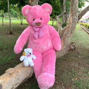 Pink Teddy Bear 140 cn - Flower Delivery Bangkok